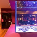 purple-room-aquarium-02