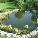 pond-6