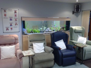Aquarium Maintenance Devon